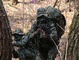 [Army Special Forces] Training exercise held ... 대표 이미지